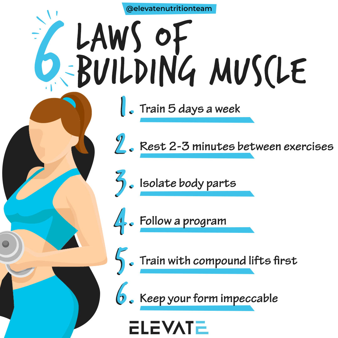 6 laws of muscle - Elevate Nutrition