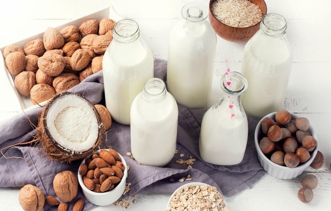 dairy free alternatives milk cheese yogurt