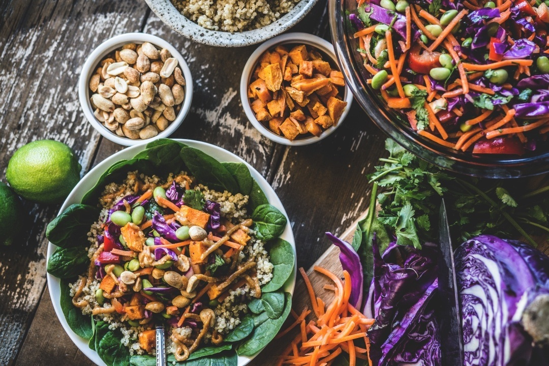 difference plant based diet vs vegan diet