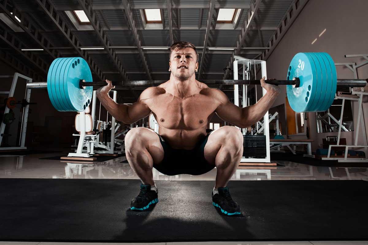 powerlifting squat web