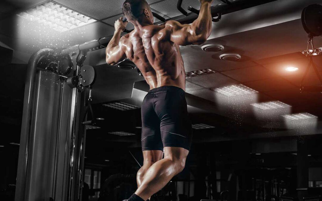 How to Build Muscle on a Plant-Based Diet